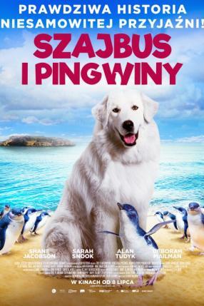 Szajbus i pingwiny