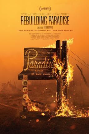THE BEST OF MDAG: Odbudować Paradise